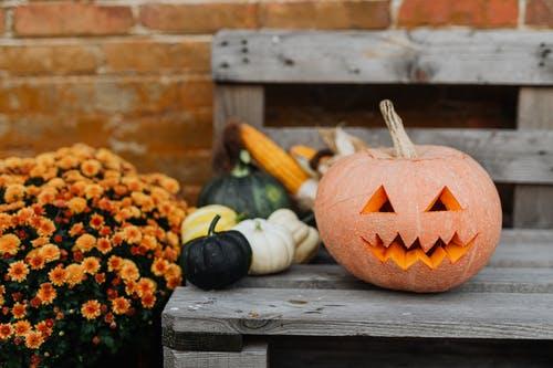 evenimente weekend halloween 30 oct-1 nov
