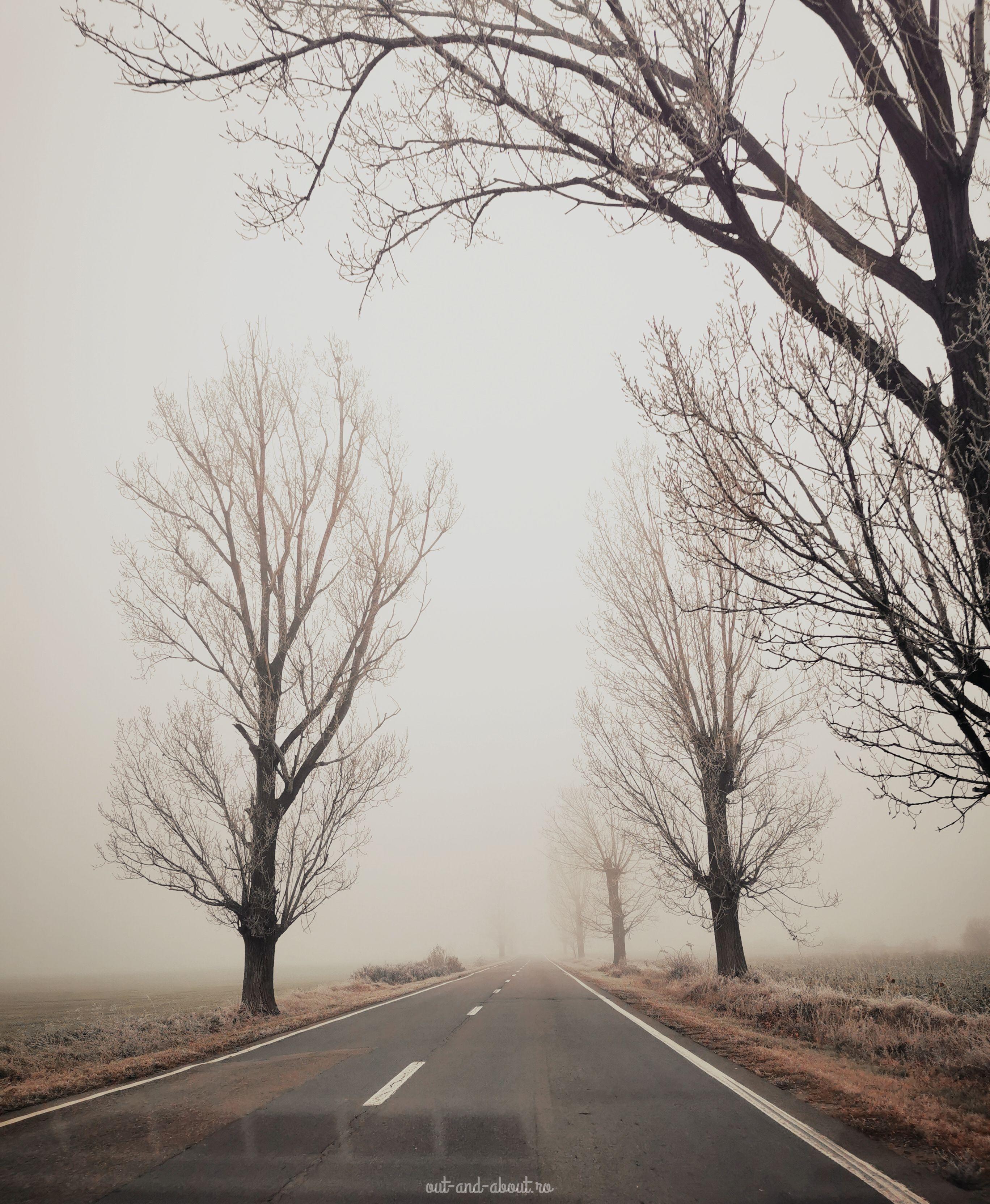 drumul spre Racoș